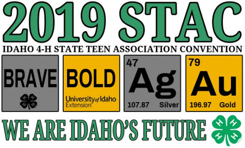 2019 STAC logo: we are idaho's future